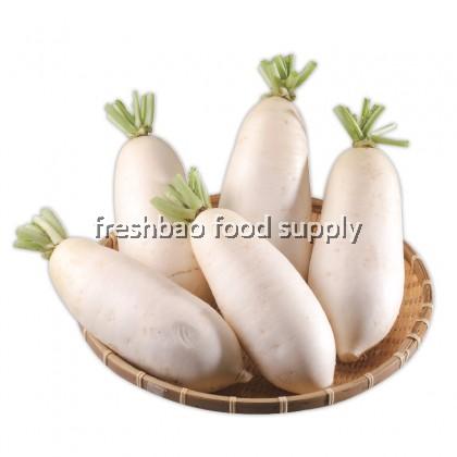 白萝卜 White Radish 1Nos
