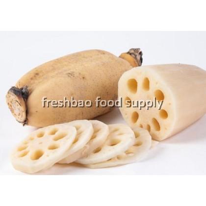 莲藕 Lotus Root 1nos