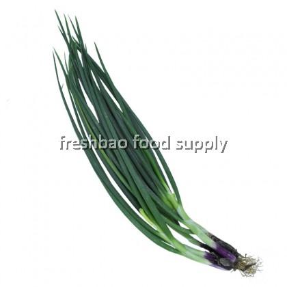 青葱 Spring Onion 250gm+-