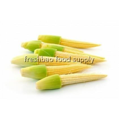 玉米芯 Jagung Baby 100gm+-